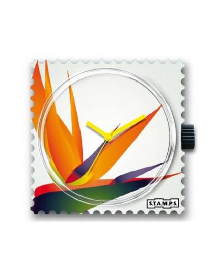 Boitier Montre Stamps 103280 Strelitzia-GPerDuMesAiguilles.com