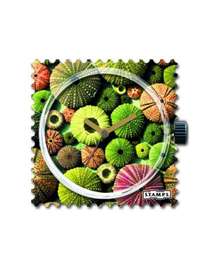 Boitier Montre Stamps 104806 Cactus-GPerDuMesAiguilles.com